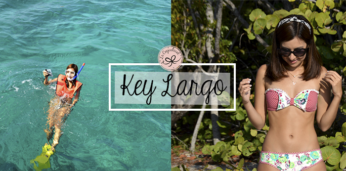 key largo 123 blog